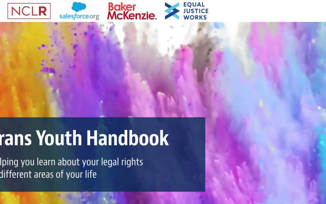 Harvard Law School LGBTQ+ Advocacy Clinic and  NCLR Release First-of-Its-Kind Comprehensive  Legal Resource for Transgender Youth